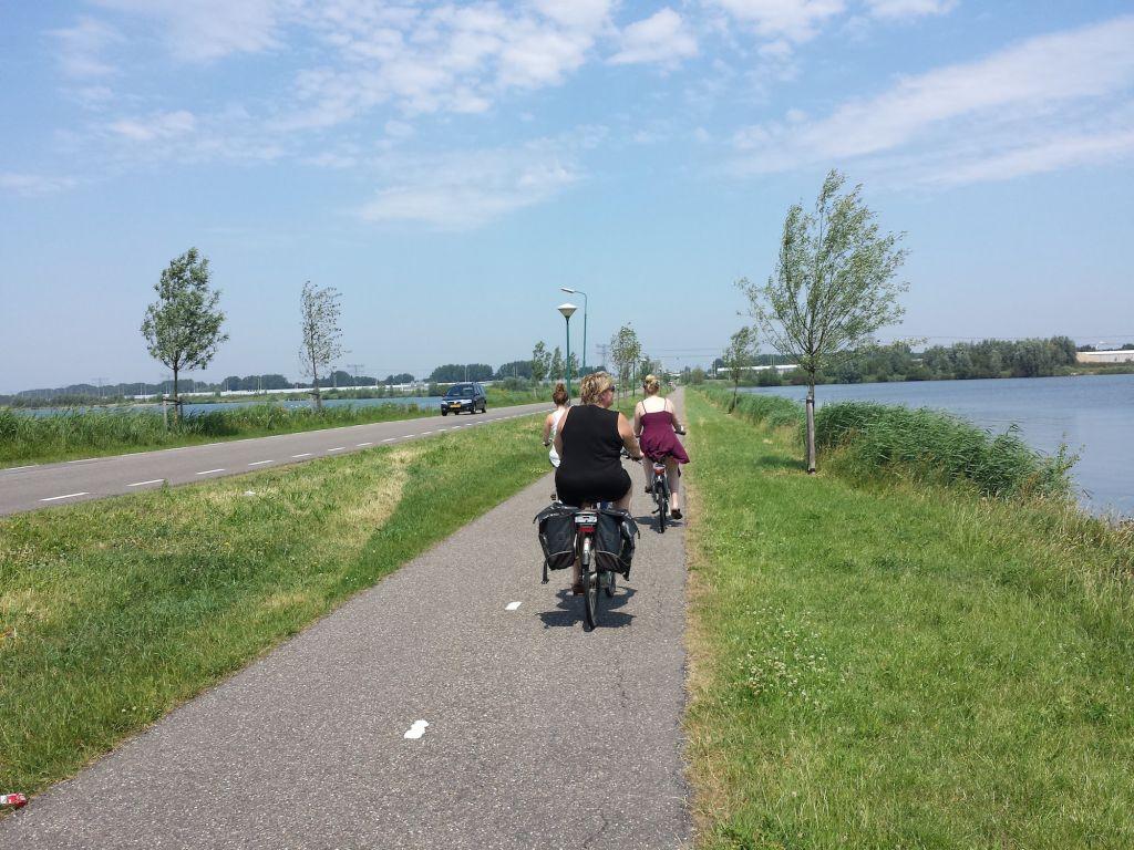 Cyclists near Utrecht