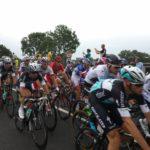 The peloton Tour De France 2015 stage 2 Gouda